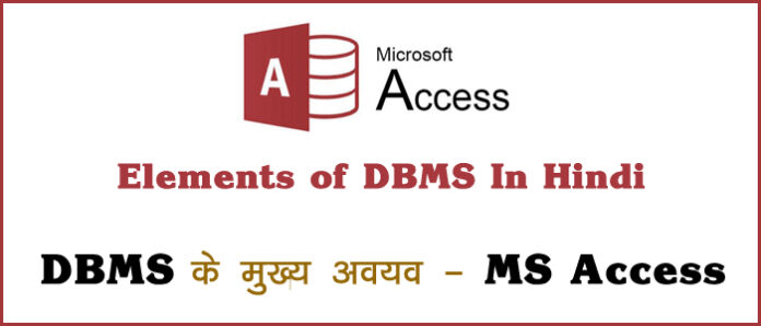 elements of dbms in hindi